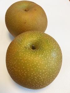 夏の果物は召し上がりましたか?