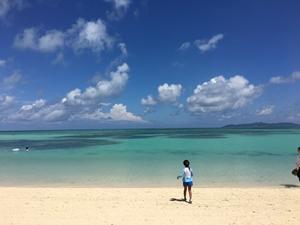 偶然出会えた「幻の浜」